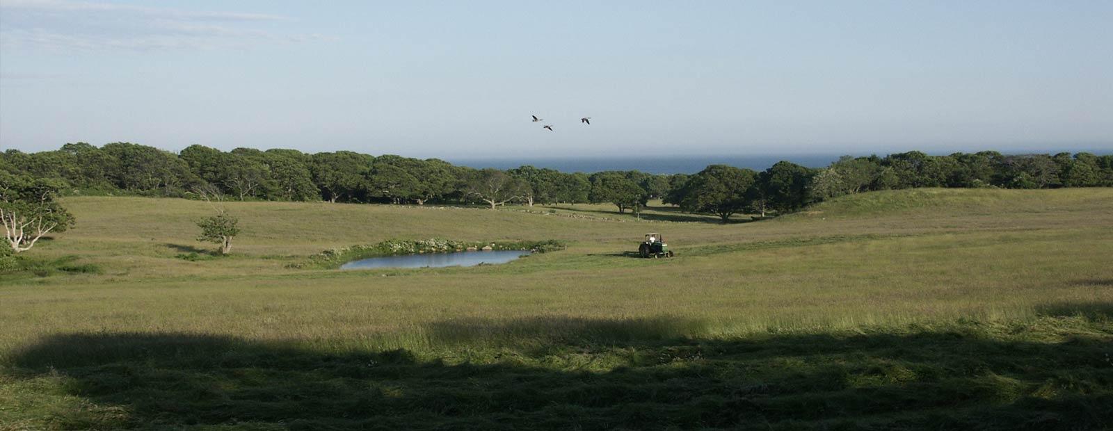 Bucolic rural vistas ...