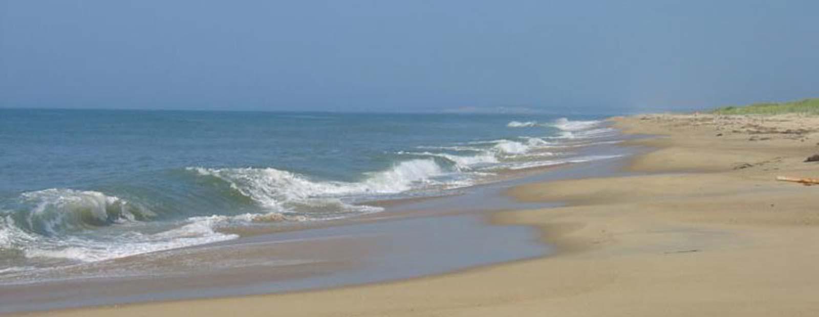Ocean views ...